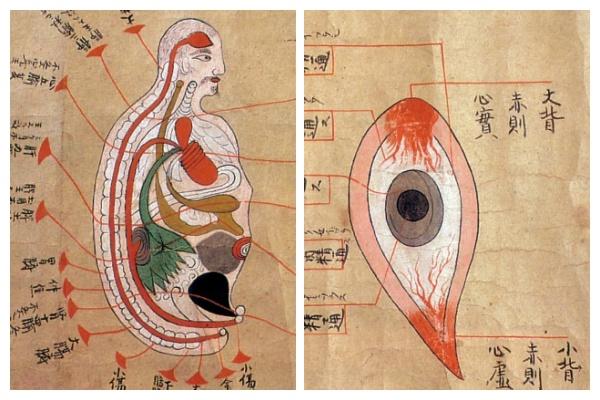 История медицины — анатомия в Японии 2