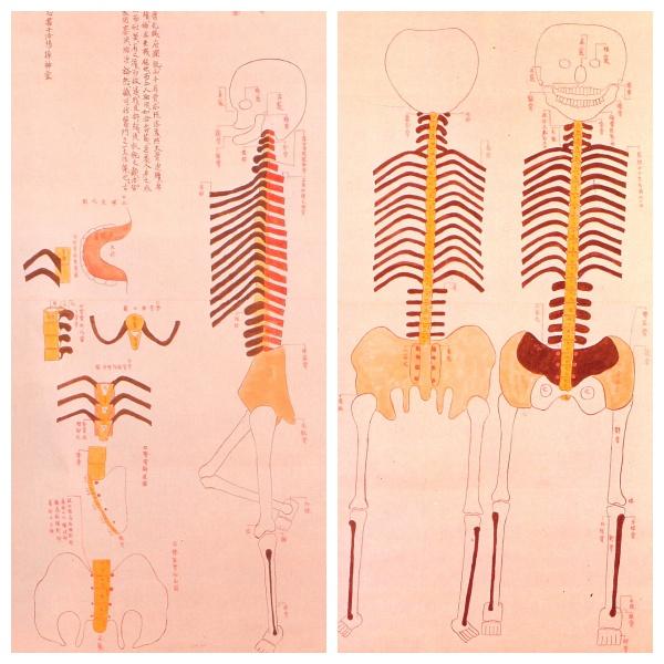 История медицины — анатомия в Японии 3