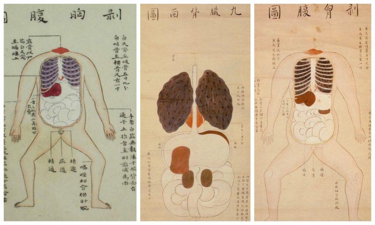 История медицины — анатомия в Японии 4