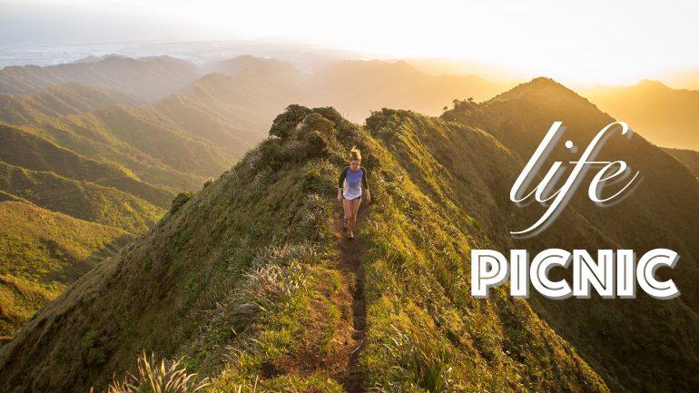 Как прошёл life picnic 2016 1
