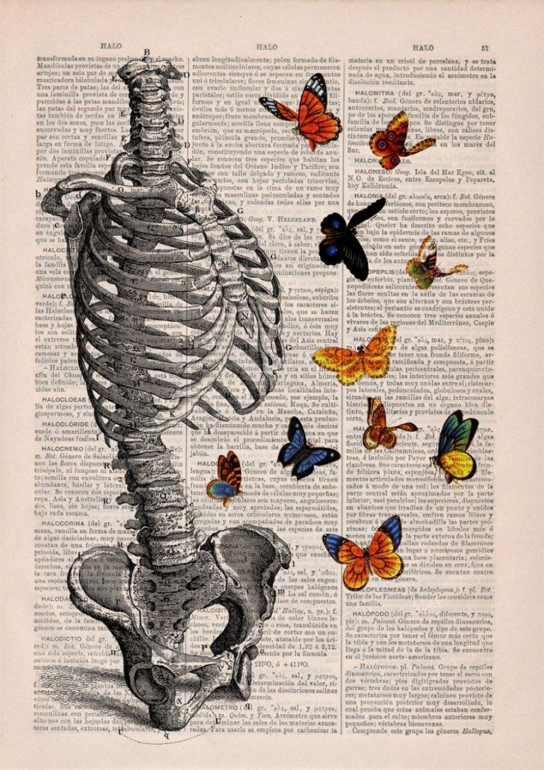 Анатомия и цветы 3