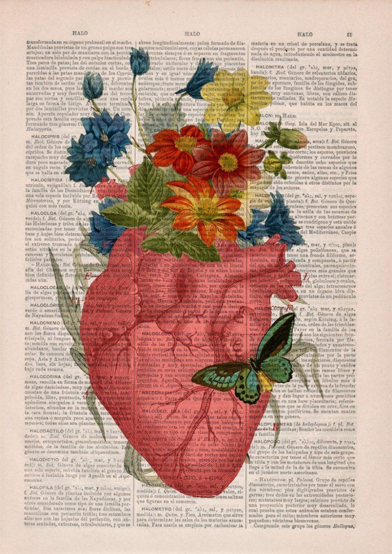 Анатомия и цветы 5